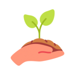 Marka jak roślina